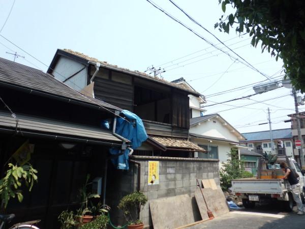 wayama5月26日 (58)